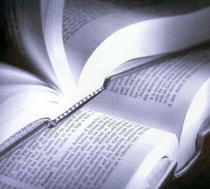 Fichamento de livro