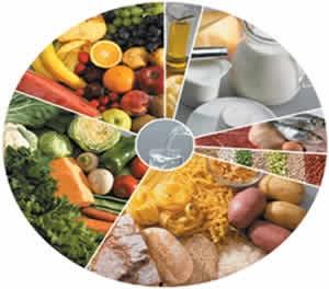 dieta do carboidrato alimentos permitidos o que comer