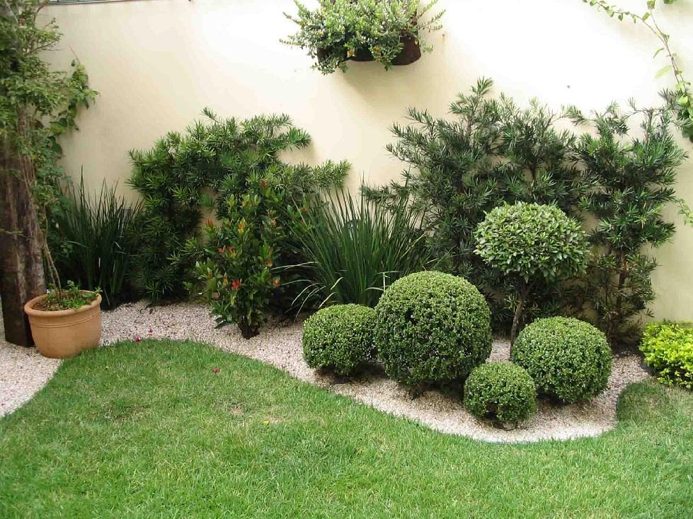 paisagismo e jardinagem fotos jardim