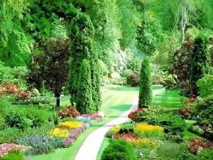 paisagismo jardim