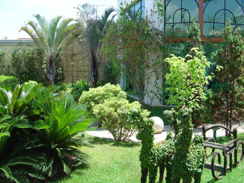 fotos jardim paisagismo:Paisagismo Residencial