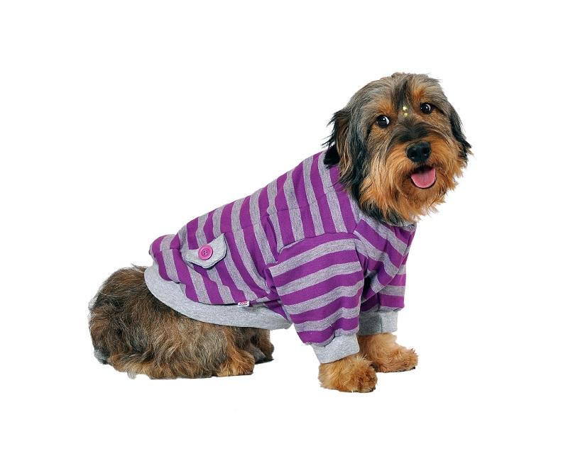 roupa de cachorro grande