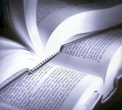 sebo de livros estante virtual