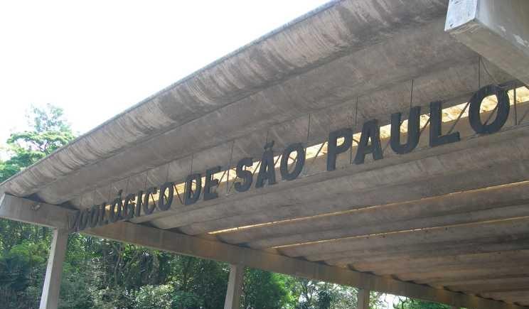 zoologico de sp precos da entrada